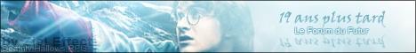 """Partenaire, forum RPG : """"19 ans après Harry Potter"""" 08011612"""