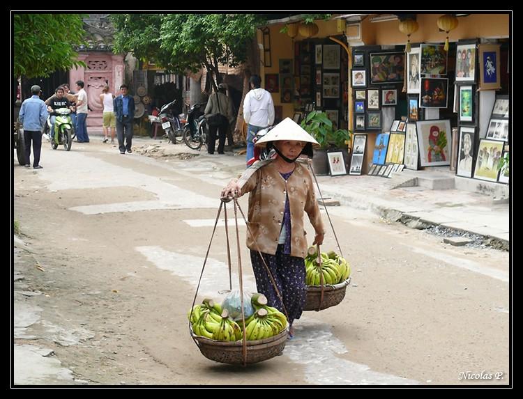 Voyage au Vietnam novembre 2007 (rajout le 21-01-08) P1000912