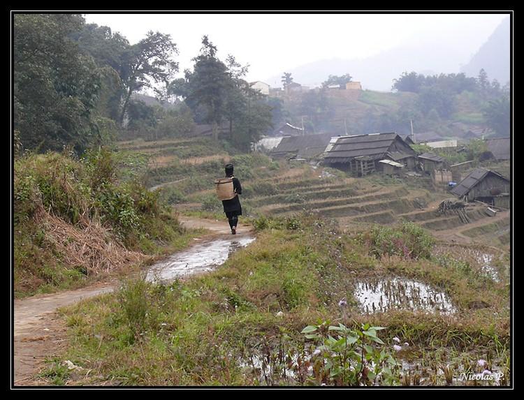 Voyage au Vietnam novembre 2007 (rajout le 21-01-08) P1010711