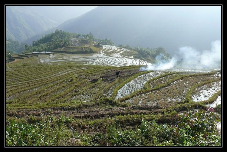 Voyage au Vietnam novembre 2007 (rajout le 21-01-08) P1010811