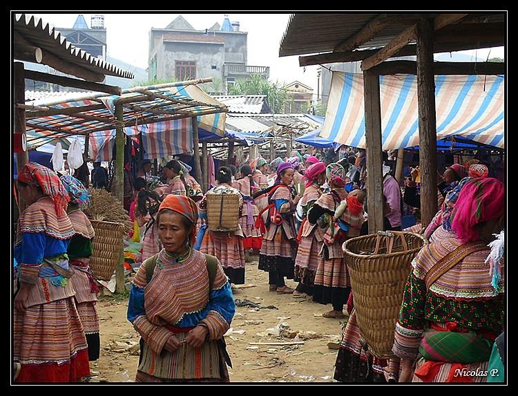 Voyage au Vietnam novembre 2007 (rajout le 21-01-08) P1010917
