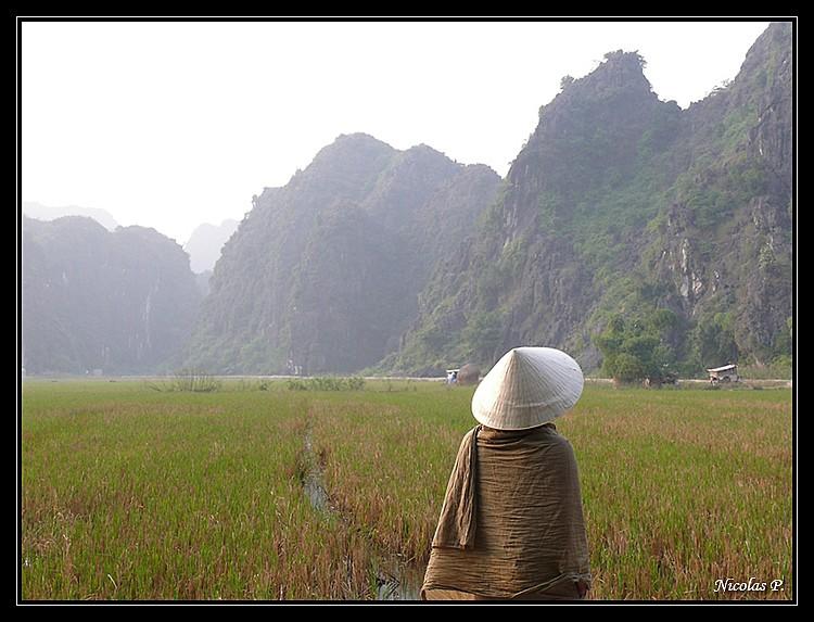 Voyage au Vietnam novembre 2007 (rajout le 21-01-08) P1020211
