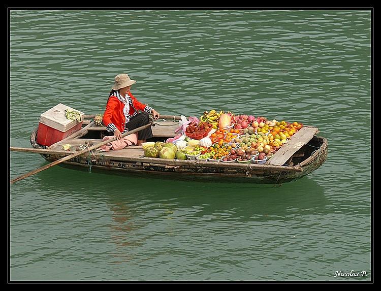 Voyage au Vietnam novembre 2007 (rajout le 21-01-08) P1020413