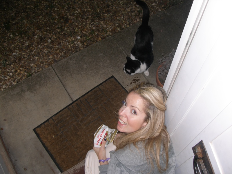Αγγλό-γατες!!! - Σελίδα 3 P1170213