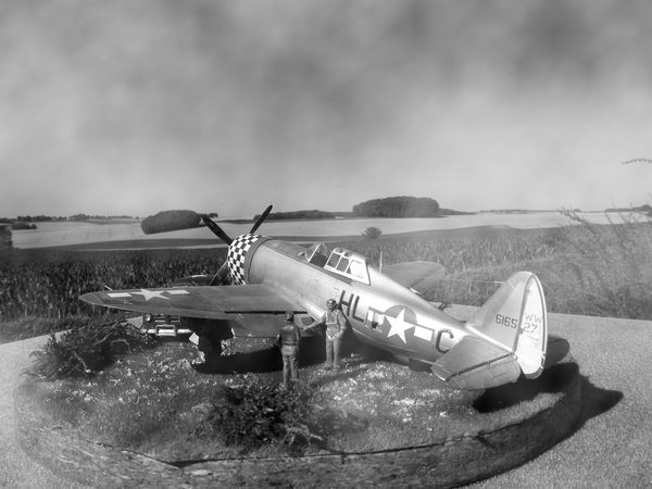 P 47 Razorback Dscf0327