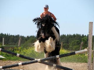 Konjić