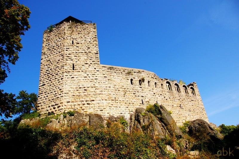 Le Château du Bernstein Bernst10