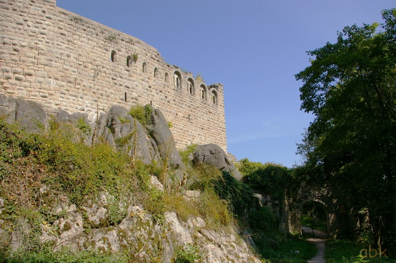 Le Château du Bernstein Bernst11