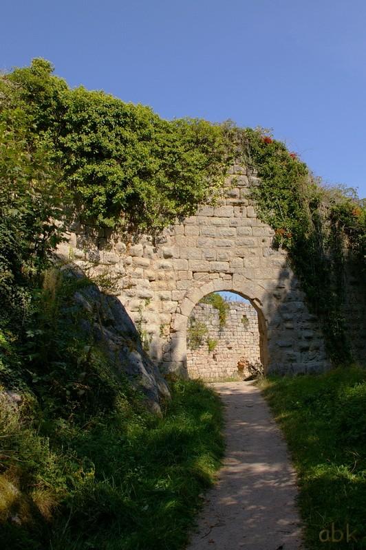 Le Château du Bernstein Bernst12