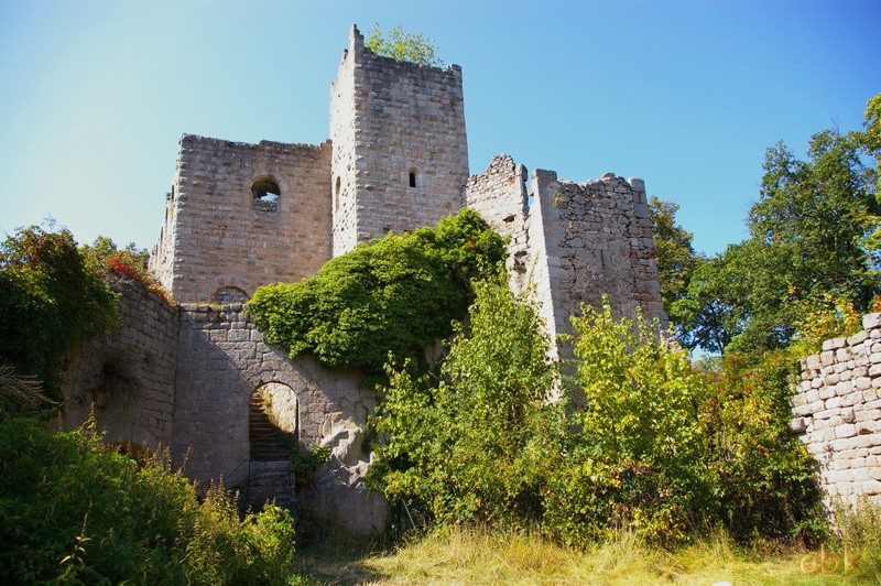 Le Château du Bernstein Bernst14