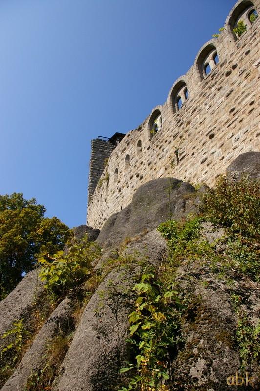 Le Château du Bernstein Bernst16