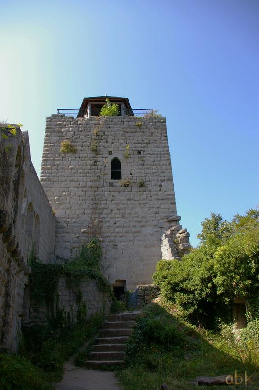 Le Château du Bernstein Bernst18