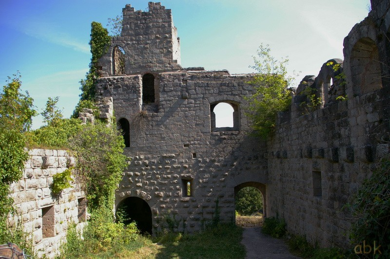 Le Château du Bernstein Bernst19