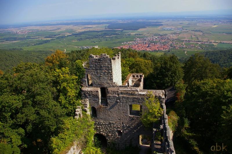 Le Château du Bernstein Bernst21