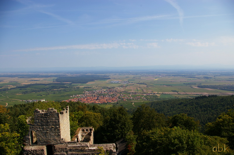 Le Château du Bernstein Bernst23