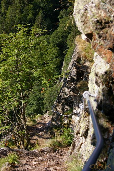Du Col de la Schlucht au Hohneck, via le Sentier des Roches Imgp2211