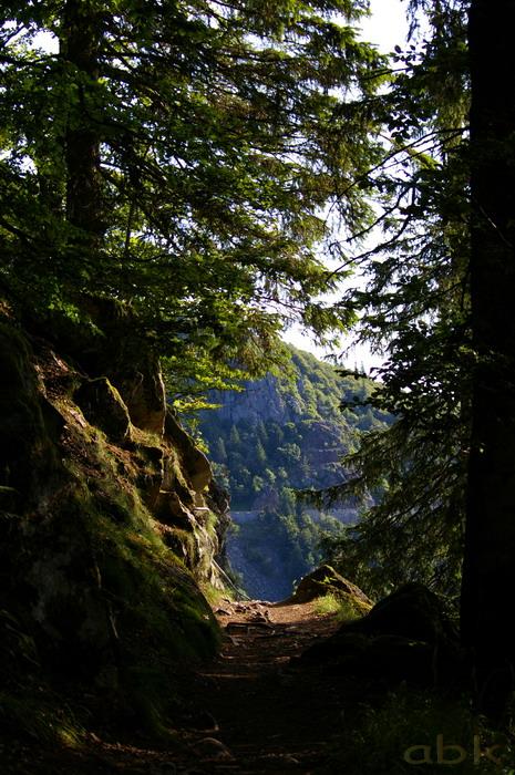 Du Col de la Schlucht au Hohneck, via le Sentier des Roches Imgp2213