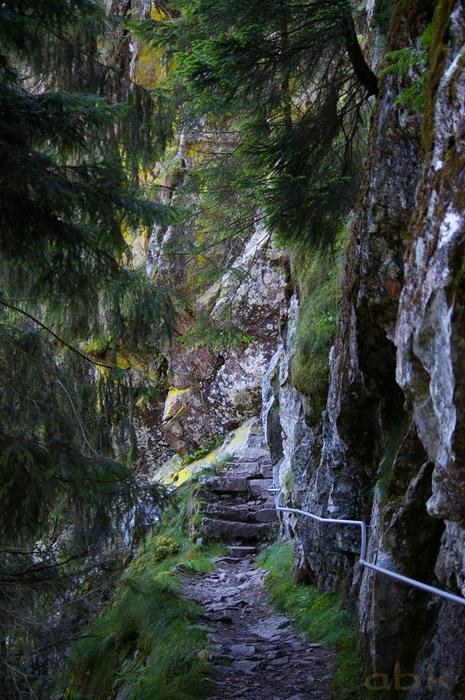 Du Col de la Schlucht au Hohneck, via le Sentier des Roches Imgp2311