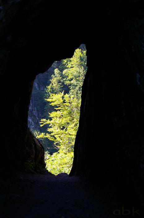 Du Col de la Schlucht au Hohneck, via le Sentier des Roches Imgp2312