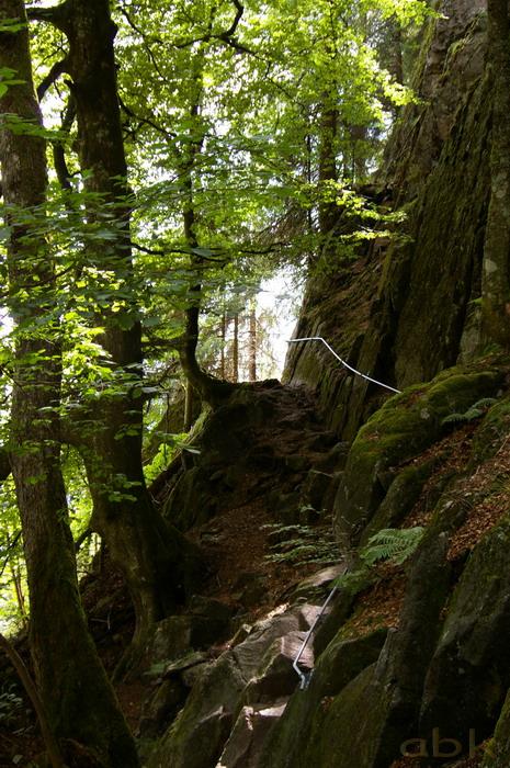 Du Col de la Schlucht au Hohneck, via le Sentier des Roches Imgp2315