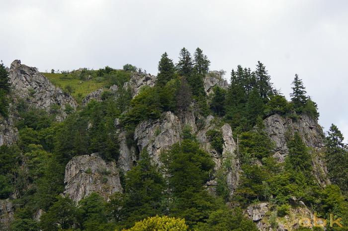 Du Col de la Schlucht au Hohneck, via le Sentier des Roches Imgp2319