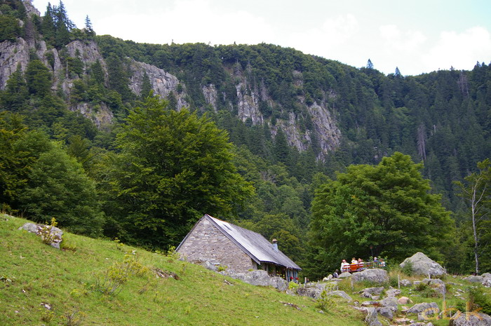 Du Col de la Schlucht au Hohneck, via le Sentier des Roches Imgp2321