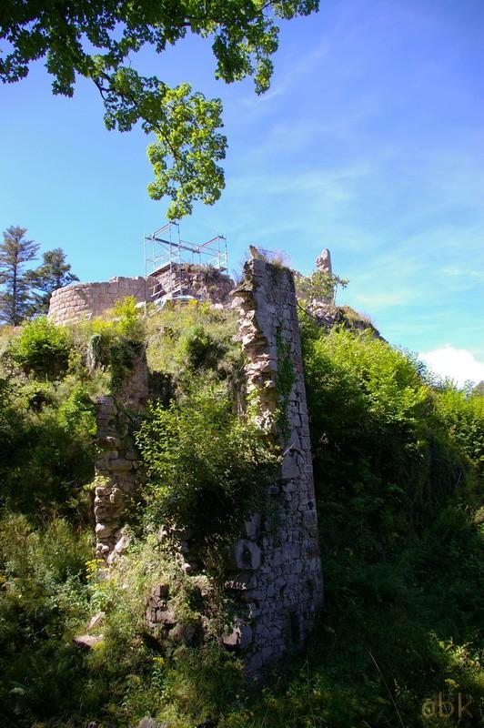 Le Château du Kagenfels Kagel310