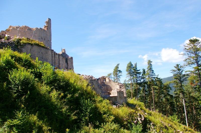 Le Château du Kagenfels Kagel410