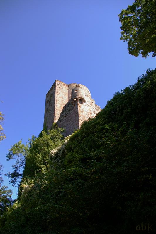 Le Château de Kintzheim Kintz110