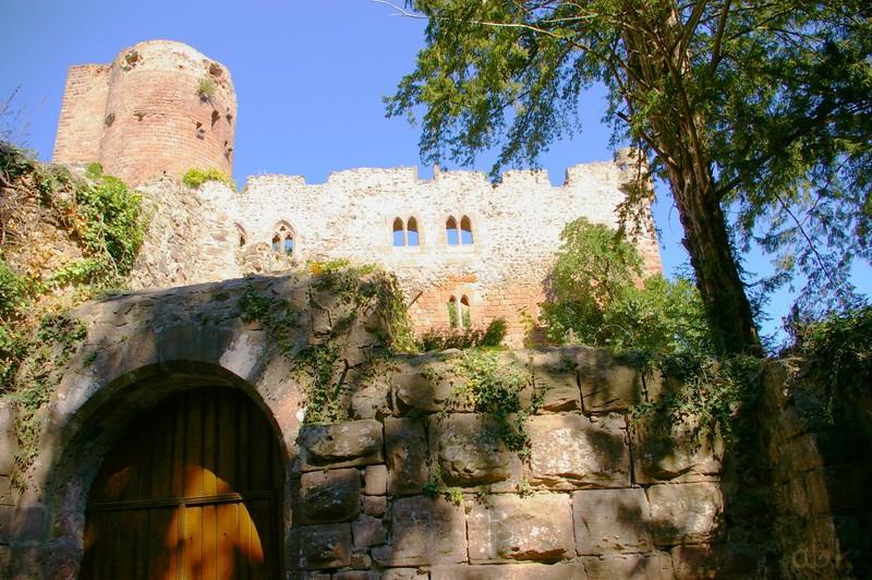 Le Château de Kintzheim Kintz210