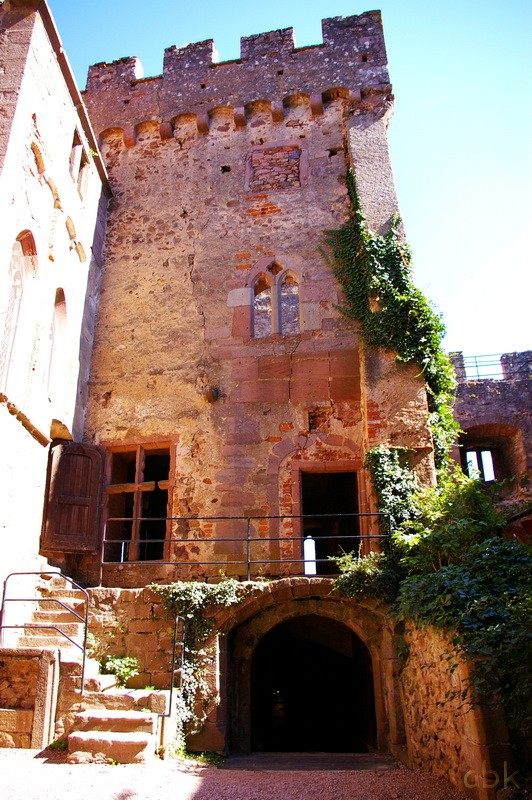 Le Château de Kintzheim Kintz410