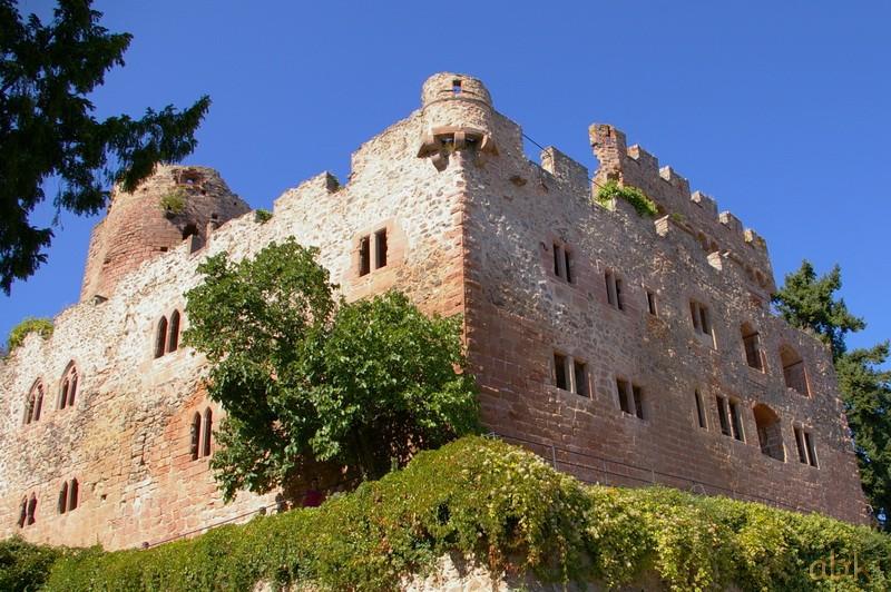 Le Château de Kintzheim Kintz710