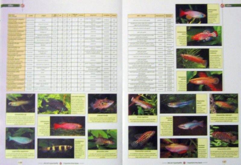 L'aquarium d'eau douce 100_4817
