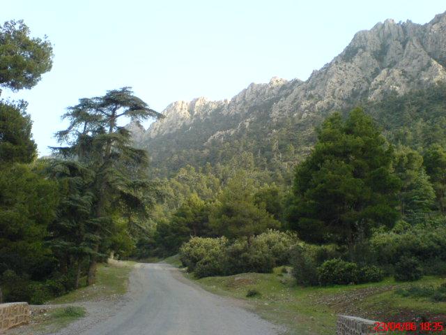 اهم المعالم وصور ولايات الجزائر Dsc00110