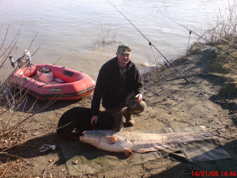 Premier poisson de l'année 2008 Dsc00011