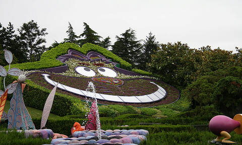 Alice S Curious Labyrinth