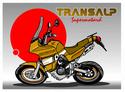 Présentation des membres (Obligatoire après l'inscription) Transa10