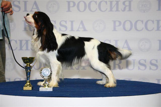"""""""РОССИЯ - 2008"""" 10561011"""
