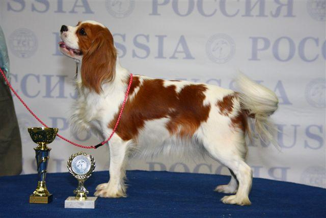 """""""РОССИЯ - 2008"""" 10561012"""