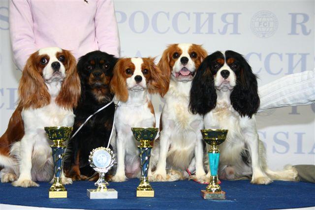 """""""РОССИЯ - 2008"""" 10561014"""