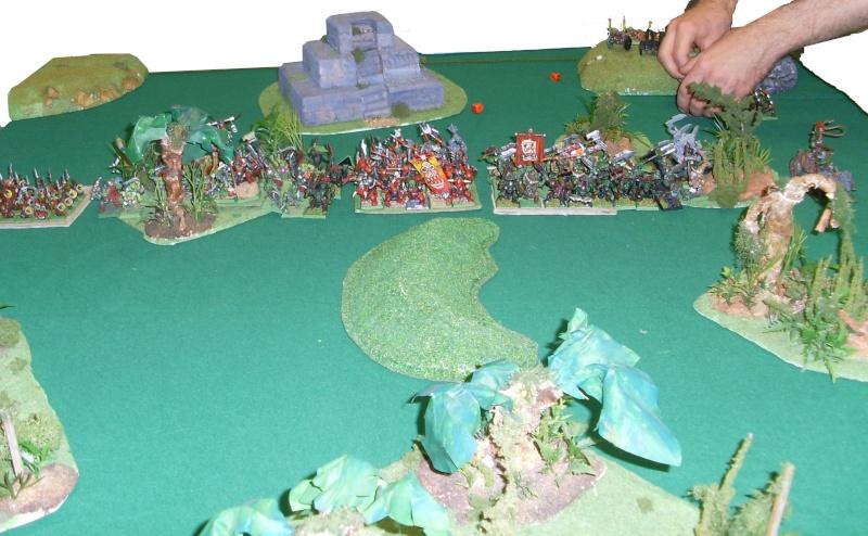 [warhammer Battle V8] Le défilé des forêts pourries :) Daploi13