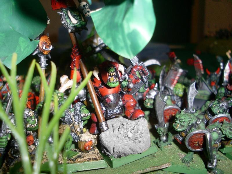 [warhammer Battle V8] Le défilé des forêts pourries :) Sl372912