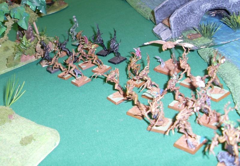 [warhammer Battle V8] Le défilé des forêts pourries :) Sl372913