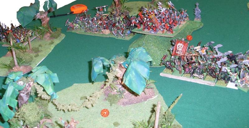 [warhammer Battle V8] Le défilé des forêts pourries :) Sl372914