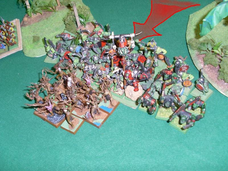 [warhammer Battle V8] Le défilé des forêts pourries :) Sl372918