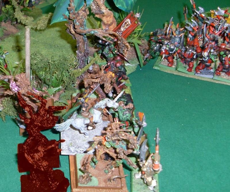 [warhammer Battle V8] Le défilé des forêts pourries :) Sl373011
