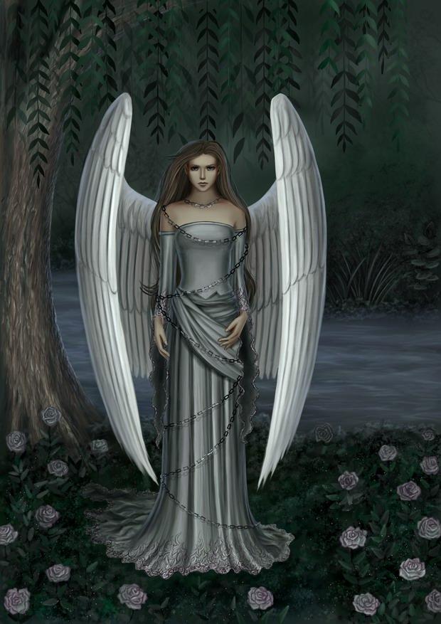 juste quelques images d'anges et Feerique 1k589310