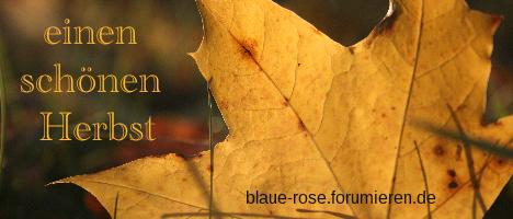 Gesuche und Grüße Herbst11