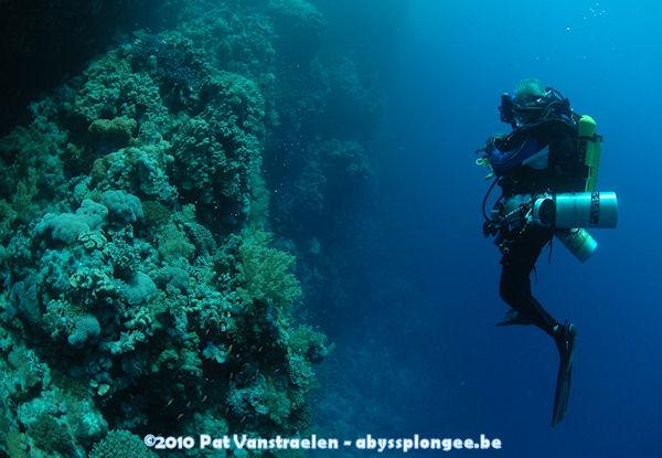 CR semaine plongée tek en CCR mer rouge avec ABYSS Dsc_0024