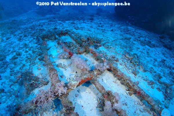 CR semaine plongée tek en CCR mer rouge avec ABYSS Dsc_0029